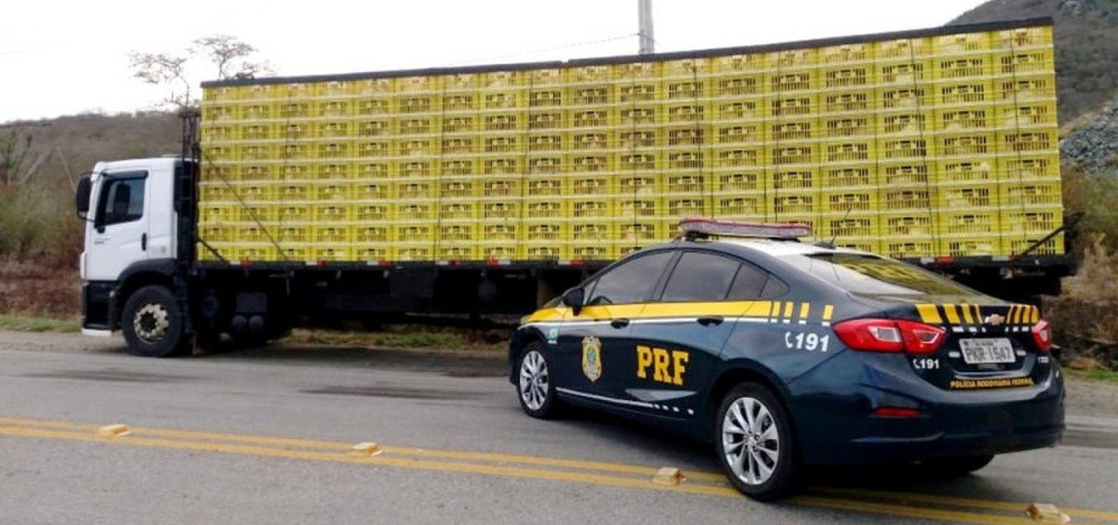 [Mais de 3 mil galinhas transportadas irregularmente são apreendidas na Bahia]