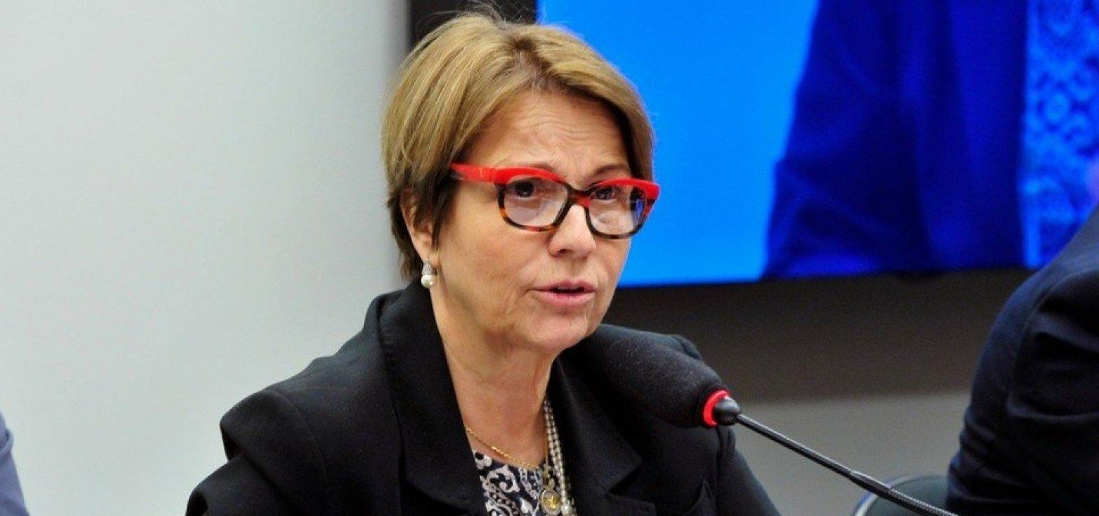 [Bolsonaro indica nomeação deministra da Agricultura em seu governo]