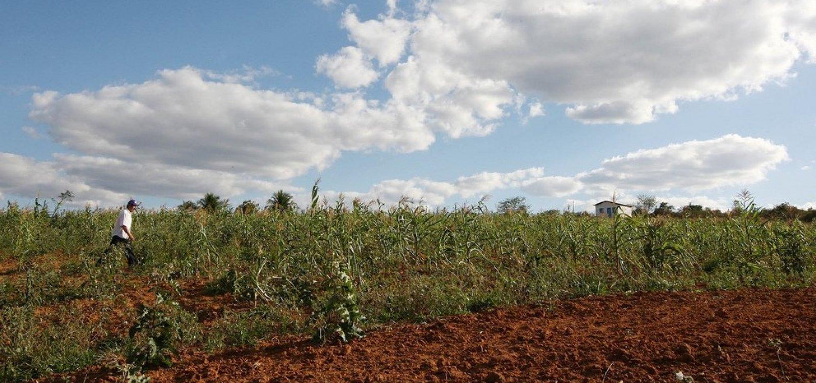 [Produção de soja deve apresentar queda de 15,4% na Bahia, em 2019]