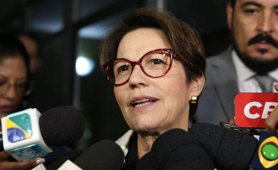 [Futura ministra de Bolsonaro deu incentivos fiscais à JBS]
