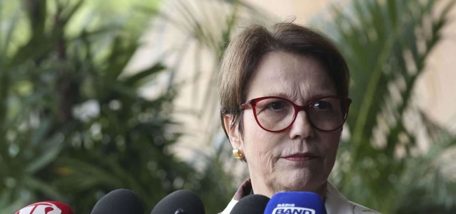[Tereza Cristina diz que Ministério da Agricultura terá Secretaria de Assuntos Fundiários]