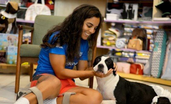 [ONG realiza feira de adoção de animais com necessidades especiais no domingo]