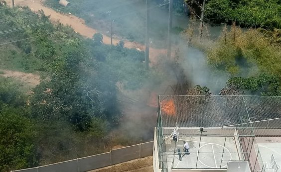 [Incêndio atinge vegetação no Imbuí e moradores denunciam demora dos bombeiros]