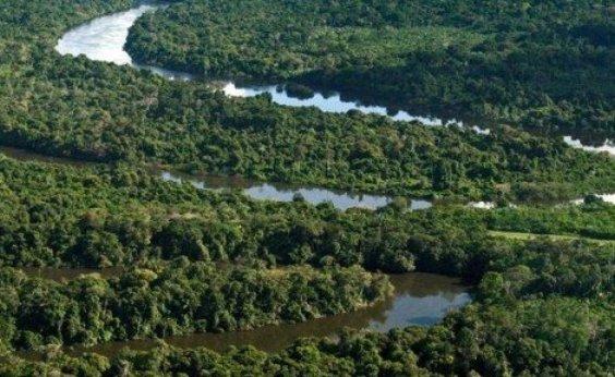[Temperatura na Amazônia pode aumentar em 1,45°C devido a desmatamento]