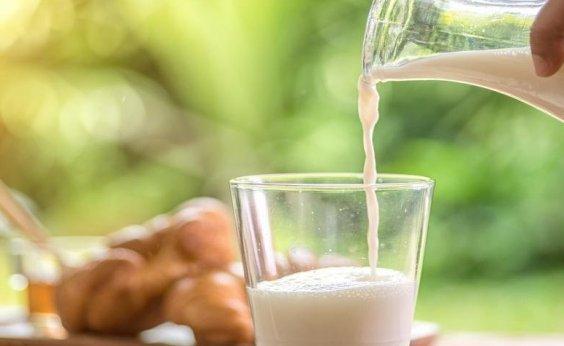 [Aquisição de leite na Bahia registra aumento anual de 18,6%]