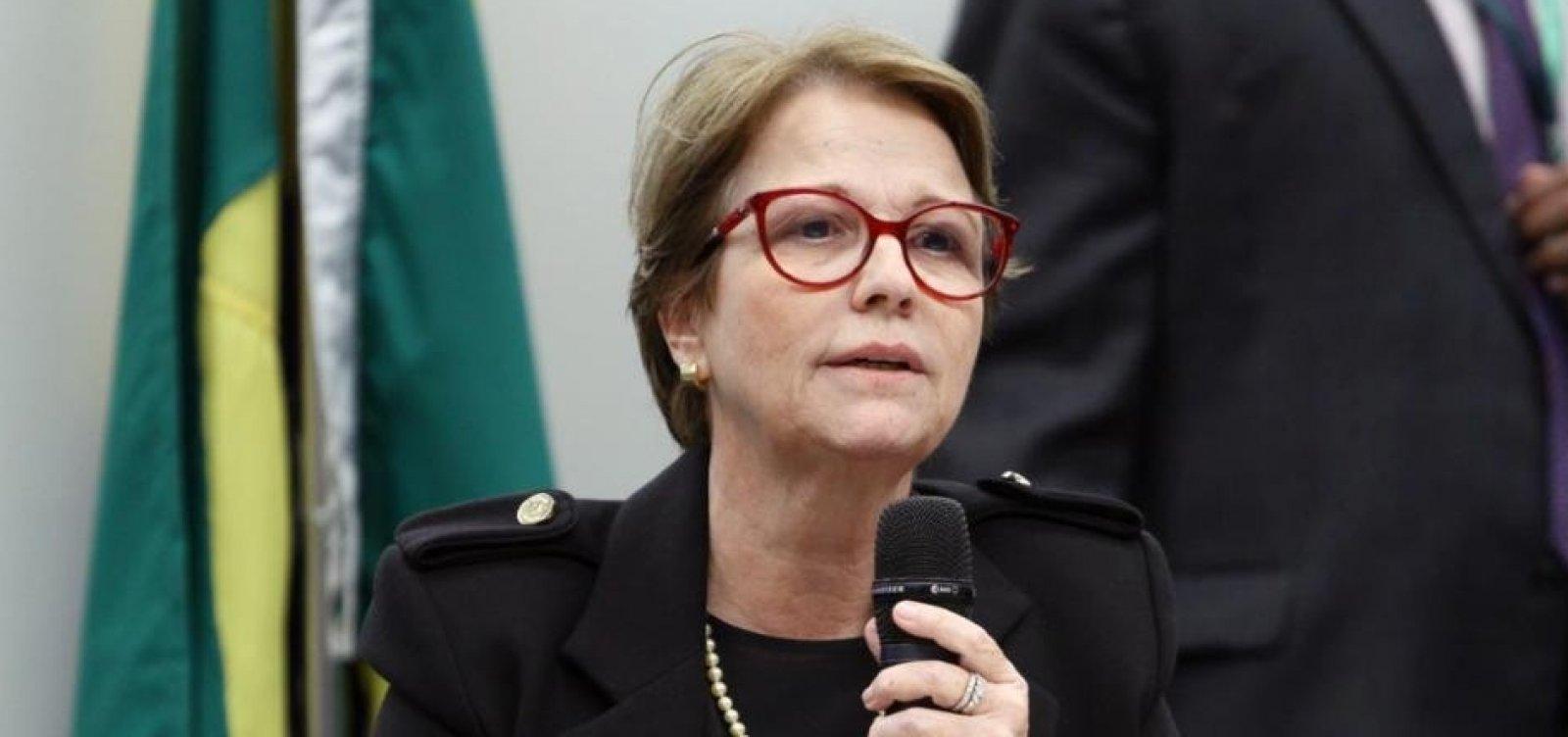 ['Brasileiro não passa muita fome porque tem muita manga', diz ministra da Agricultura]