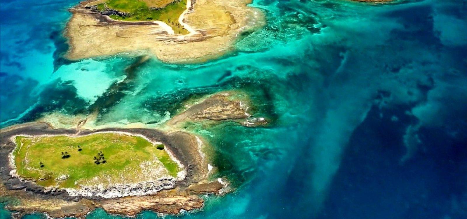 [Entidades ambientais protestam contra exploração de blocos de petróleo em Abrolhos]