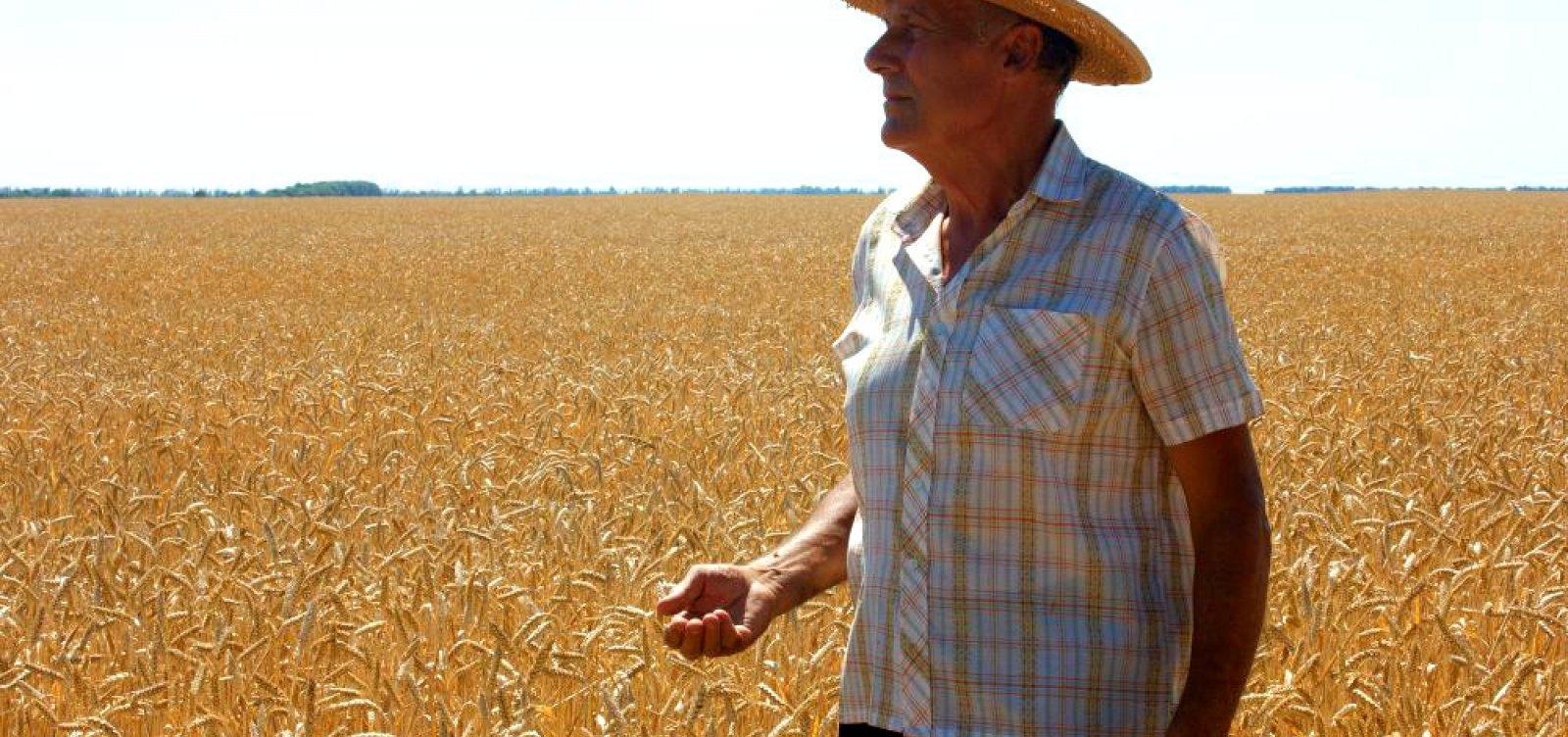 [Ipea: número de aposentadorias rurais é maior que população declarada]