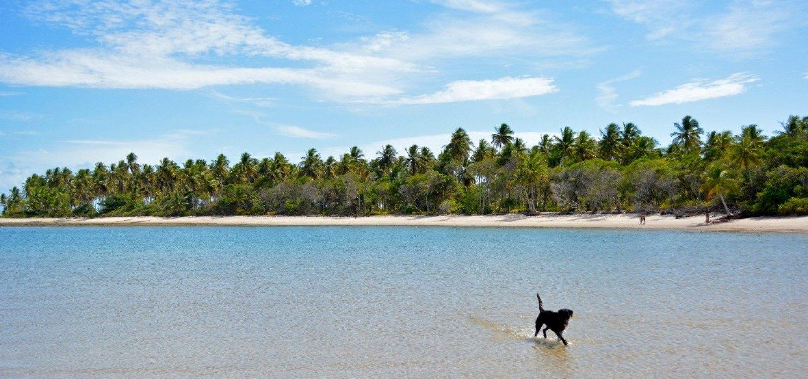 [MPF recomenda suspensão de construção de resort em Boipeba, na Bahia]