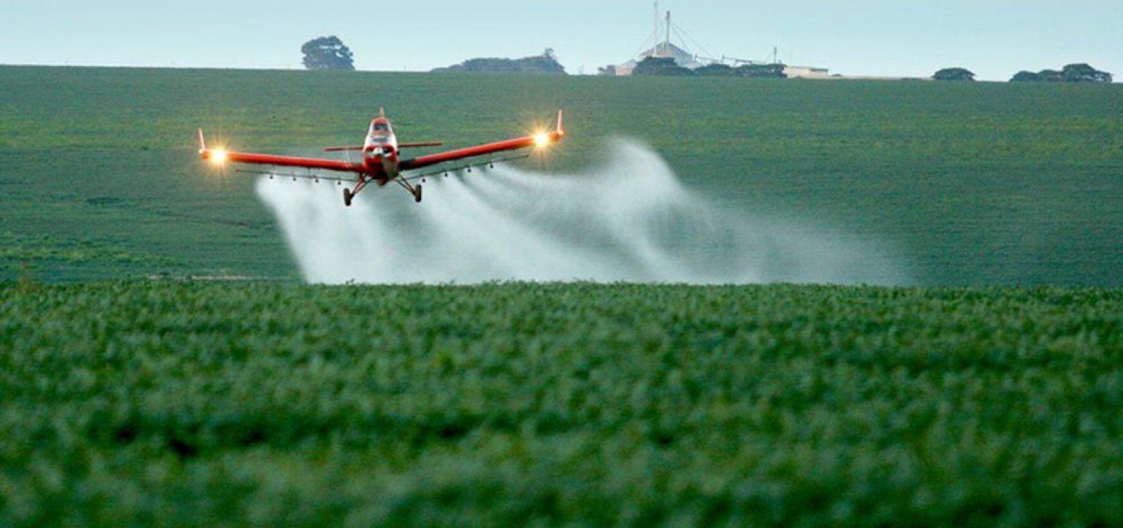 [Governo federal aprova registro de mais 31 agrotóxicos, somando 169 no ano]