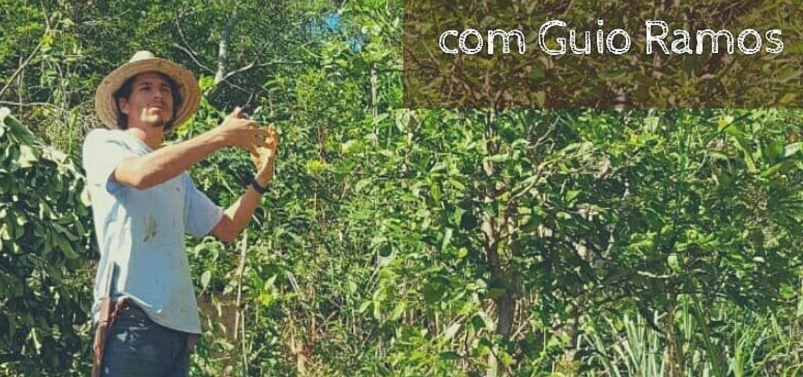 [Curso de Agrofloresta Sintrópica com Guio Ramos abre inscrições na Bahia]
