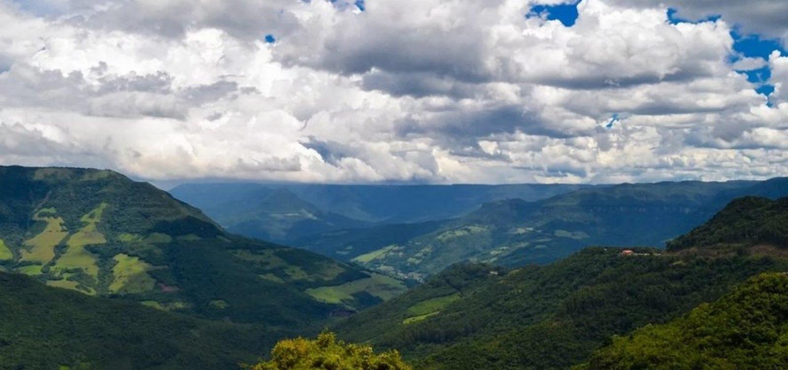 [Devastação da Mata Atlântica cresce na Bahia e em quatro estados do país, aponta levantamento]