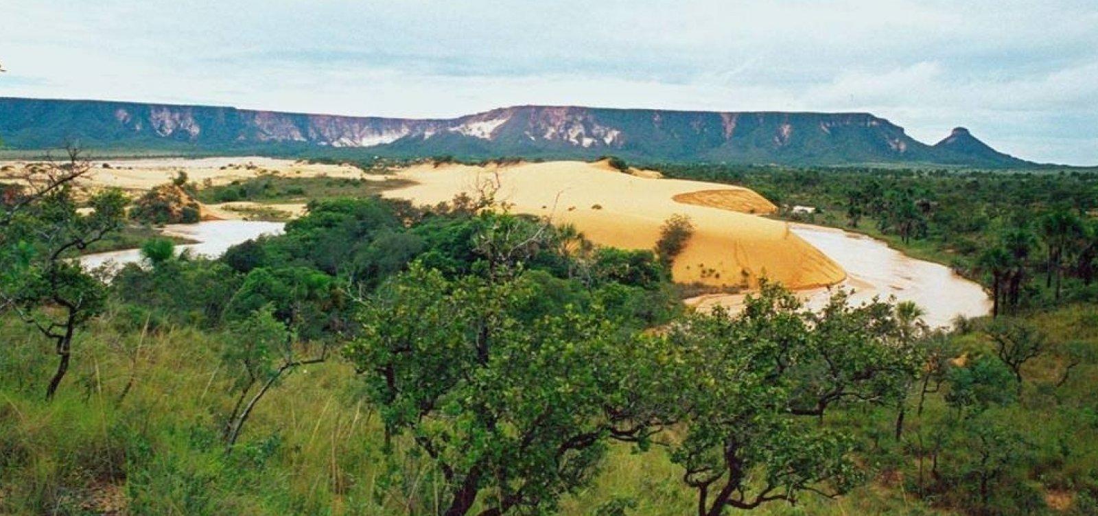 [Governo sinaliza que reenviará ao Congresso medida que altera Código Florestal]