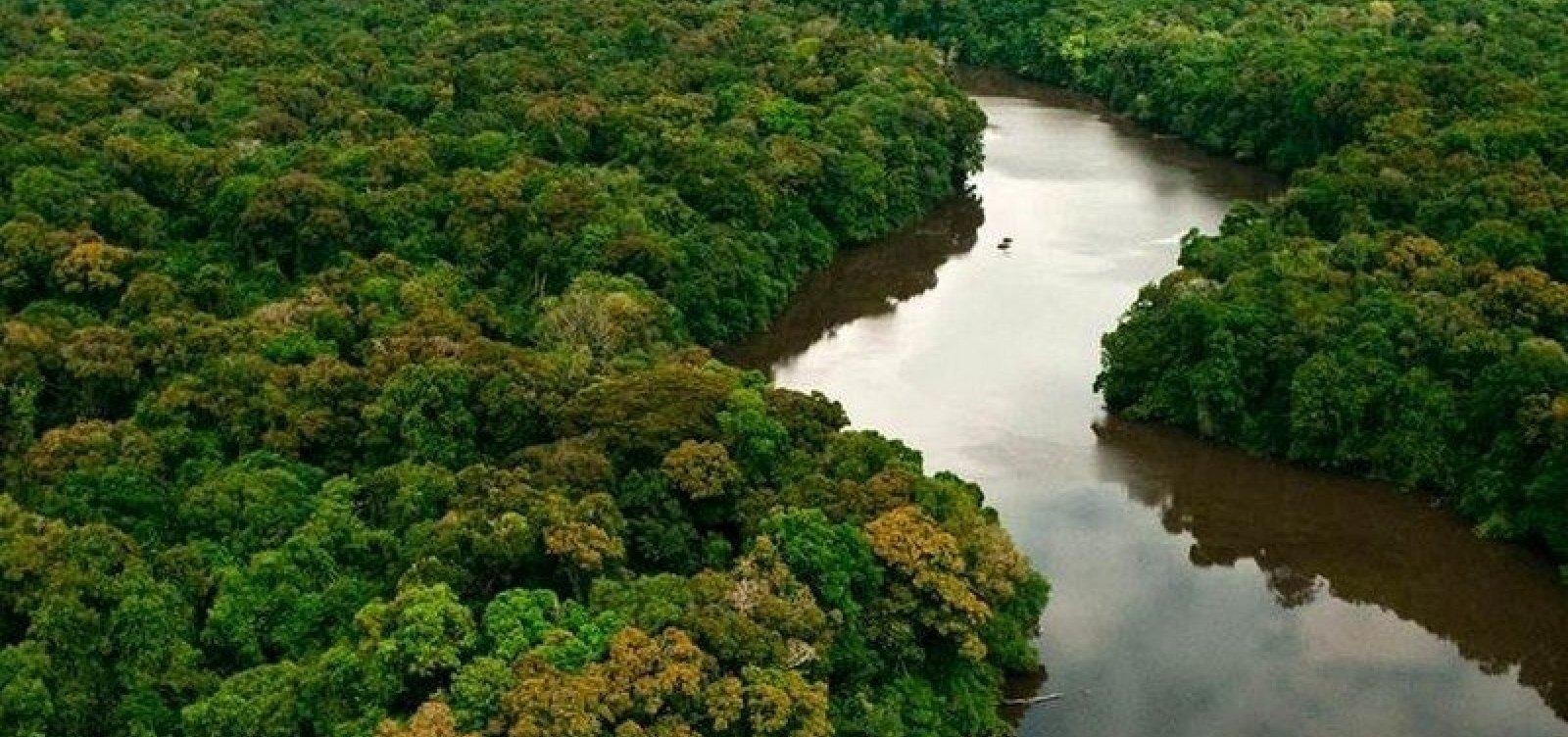 [Quase 70% das áreas de proteção da Amazônia estão sob ameaça, diz estudo]