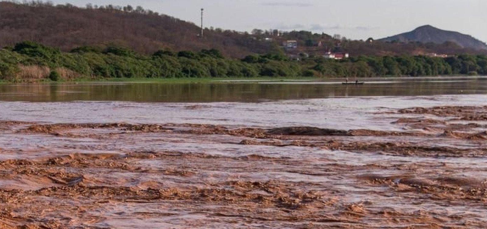 [Análise da Anvisa sobre consumo de peixes do Rio Doce causa divergências]