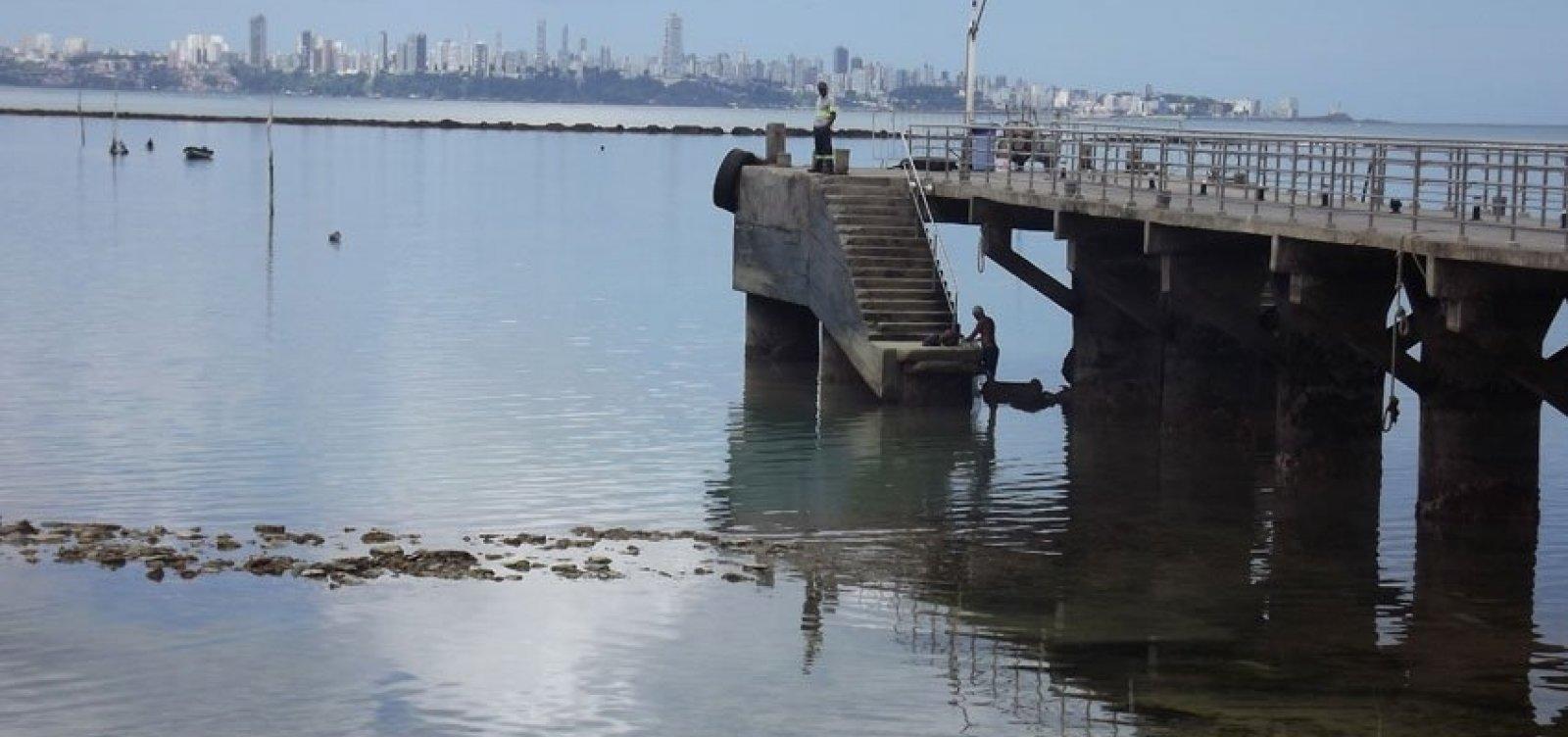[ONG denuncia suposto crime ambiental em Mar Grande]