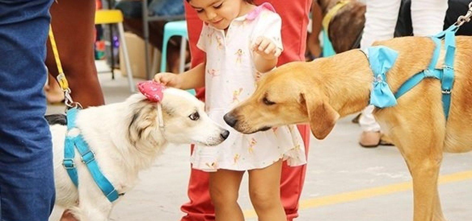 [Ação para adoção de animais acontece neste domingo]