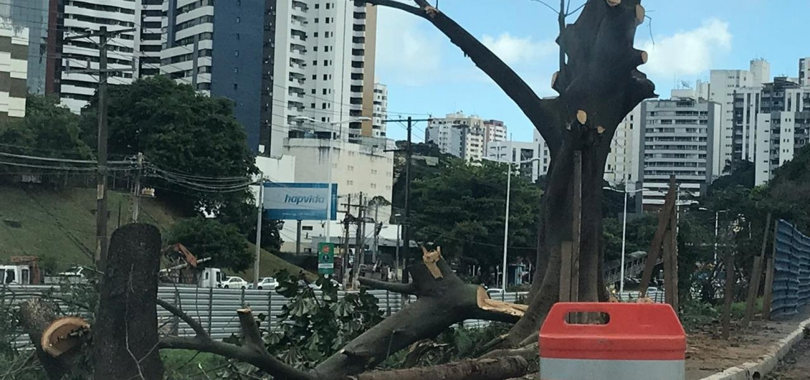 [Derrubada de árvores avança em obras do BRT na Avenida ACM]