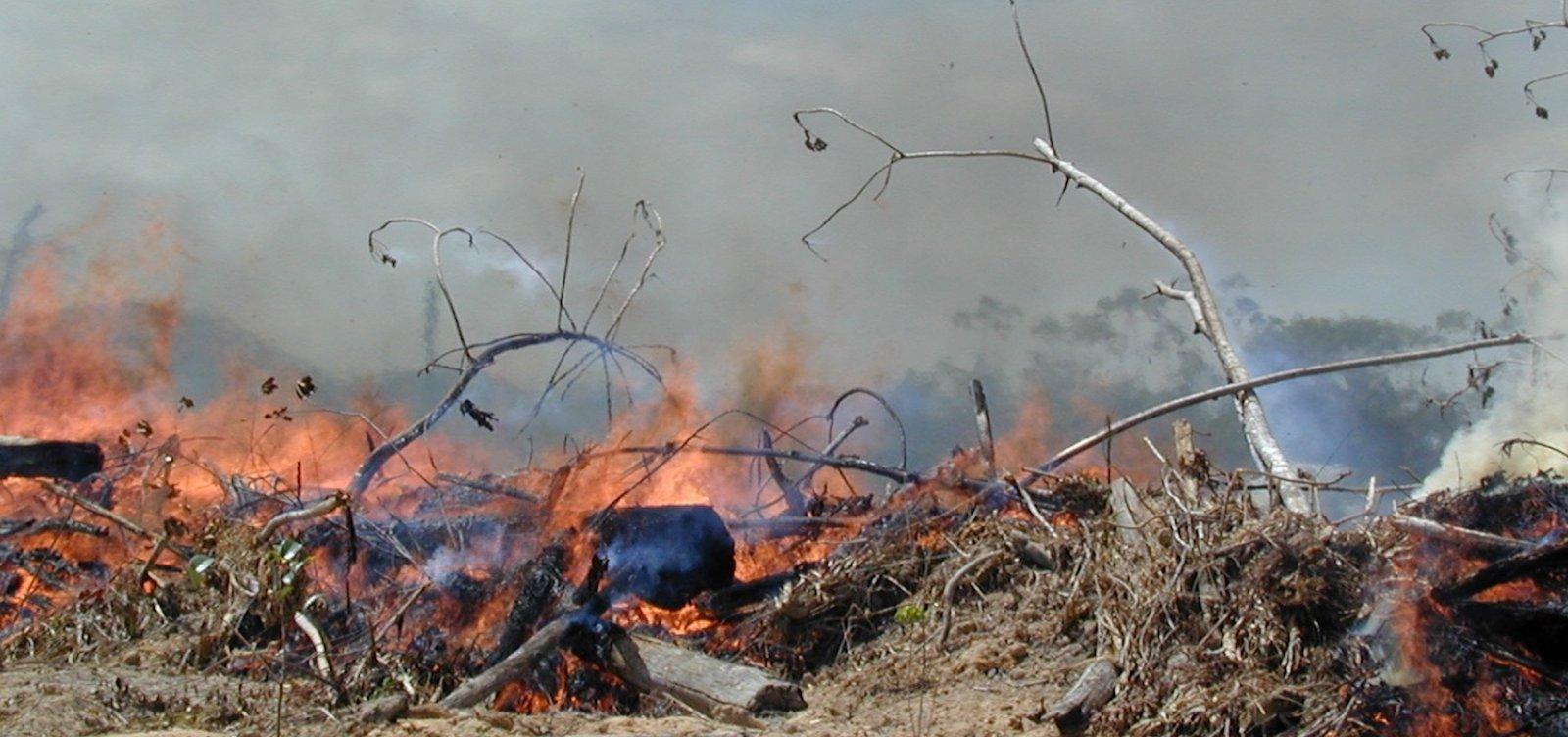[Inverno começa e clima no Brasil terá influência do El Niño, diz Inmet]