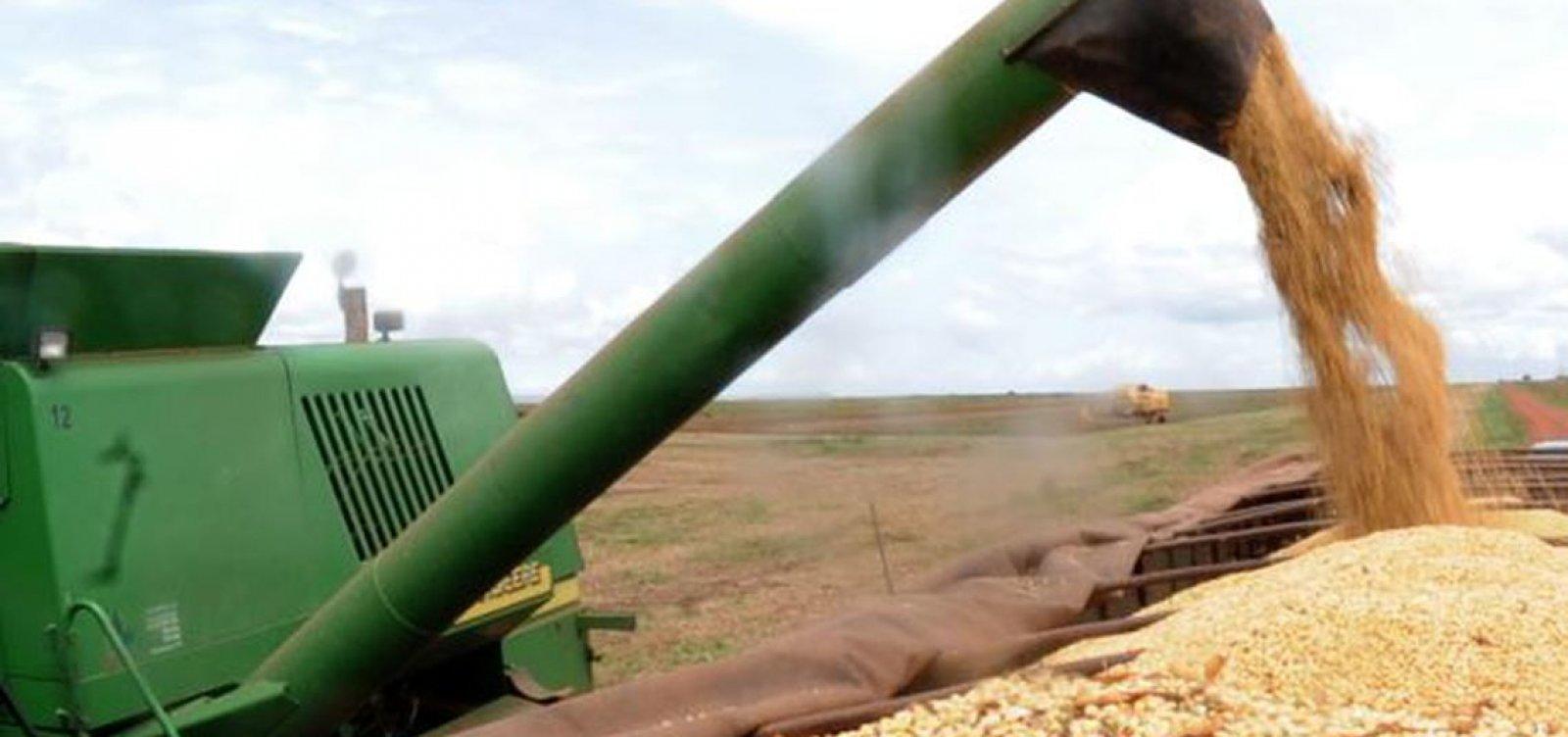 [Safra de grãos deve fechar 2019 com alta de 4,2%, estima IBGE]