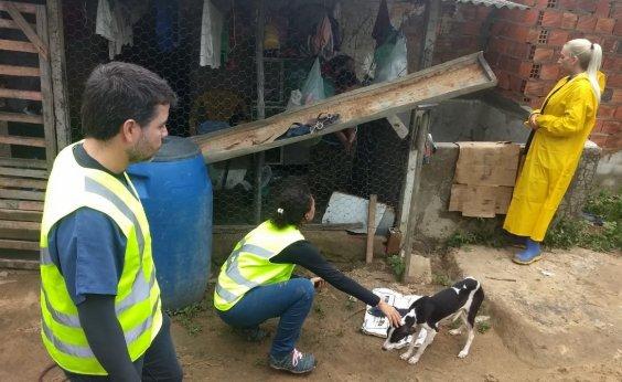 [Coronel João Sá: Mais de 300 animais foram atendios por veterinários voluntários]