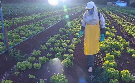 [Anvisa aprova novo marco regulatório de classificação de agrotóxicos]