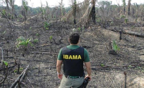 [Fim do Fundo Amazônia pode afetar fiscalizações contra o desmatamento]