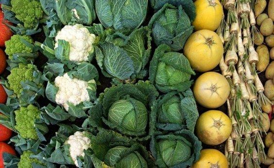 [Preço de legumes em Salvador está em queda]