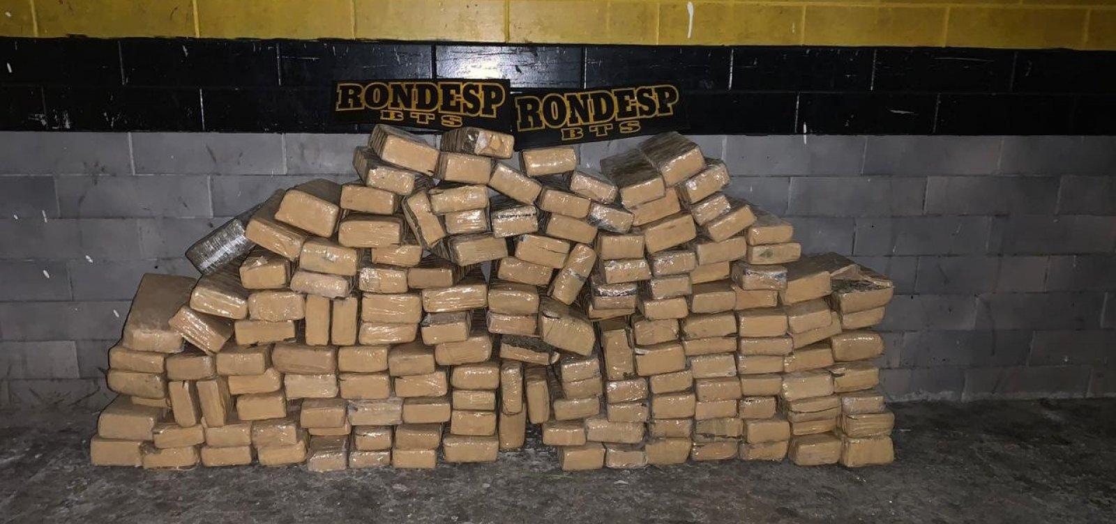 [Polícia encontra 150 kg de maconha dentro de matagal em Simões Filho]