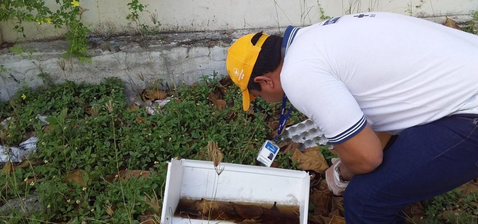 [Armadilhas contra o Aedes aegypti são instaladas em pontos estratégicos de Salvador]
