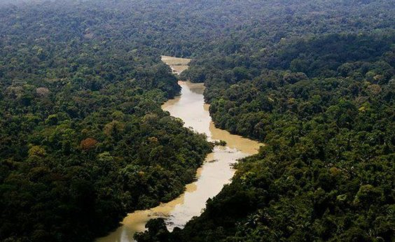 [Alvo de críticas de Bolsonaro, Fundo Amazônia paga camisetas dos brigadistas ]