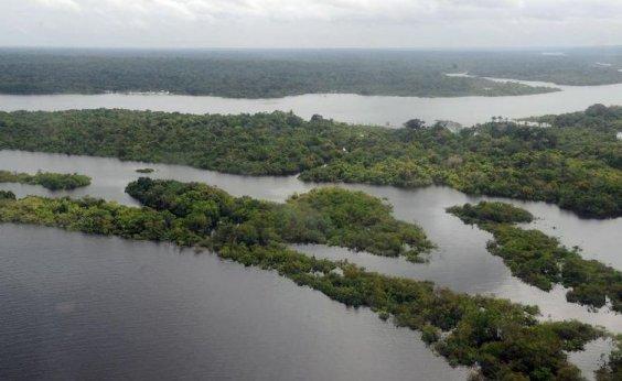 [Ibama lança edital para contratar empresa que monitore desmatamento]