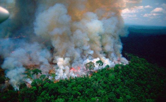 [Macron convoca G7 a discutir queimadas na Amazônia]