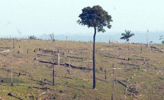 [Pelo menos quatro países e a UE ofereceram auxílio para combater fogo na Amazônia]