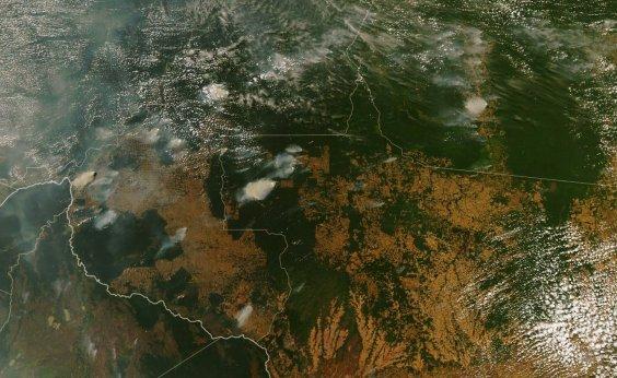 [PSL discute CPI das ONGs para rebater investigação sobre incêndios na Amazônia]