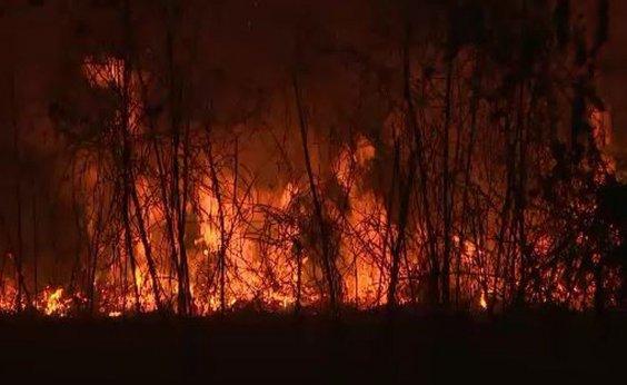 [Amazonas oficializa pedido e sete estados já autorizam Forças Armadas no combate a queimadas]