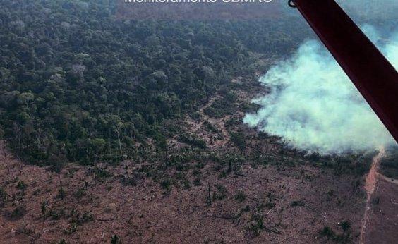 [Iniciativa criada por Leonardo DiCaprio doará US$ 5 milhões para ONGs da Amazônia]