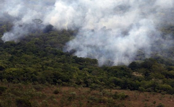 [Autuações por crimes como queimadas e desmatamento caem 23% na Amazônia Legal]
