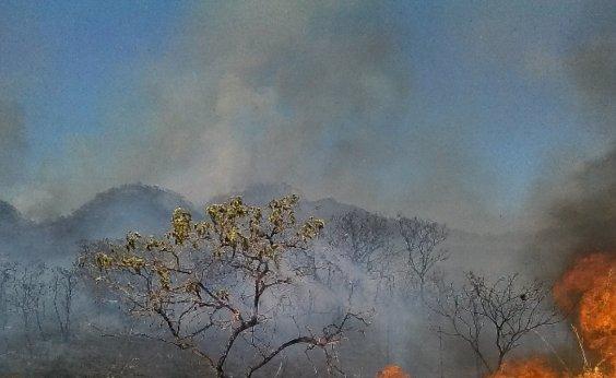 [Investidores com US$ 16 trilhões sob gestão pedem ação contra queimadas na Amazônia]