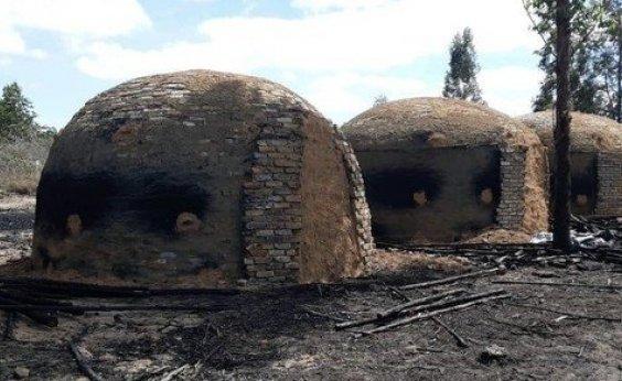 [Operação do MP apreende carvão vegetal e madeira nativa na Bahia]