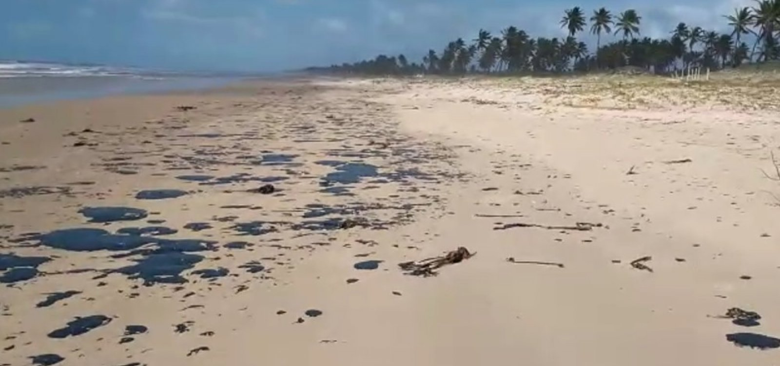 [Bahia registra quinta cidade atingida por óleo]