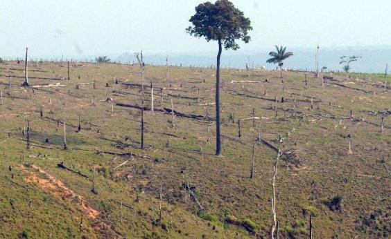 [Desmatamento na Amazônia cresce 96% em setembro, indicam alertas do Inpe]
