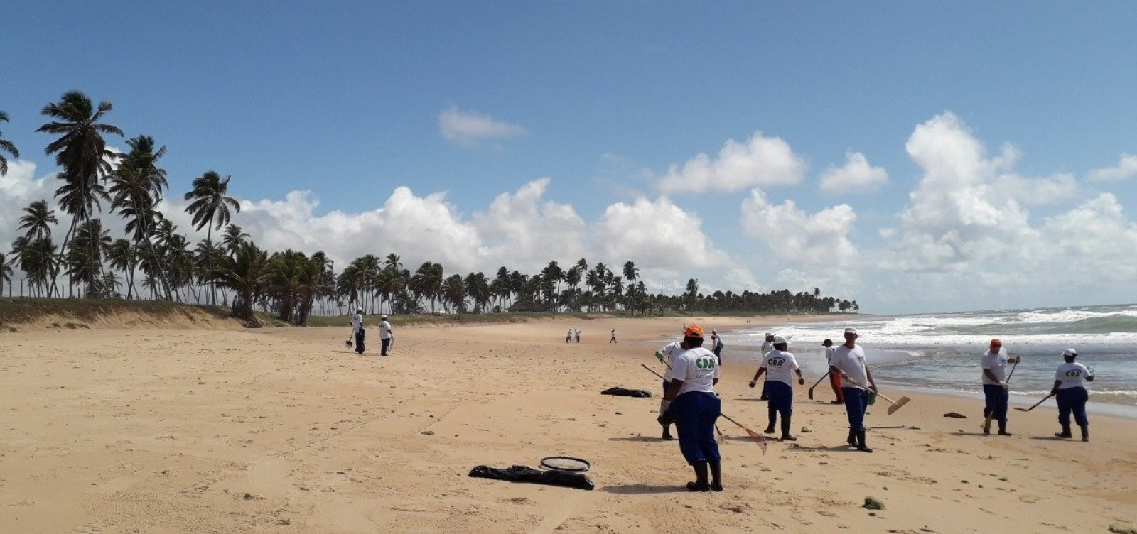 [Quinze toneladas de óleo já foram retiradas de Praia do Forte e outras localidades de Mata]