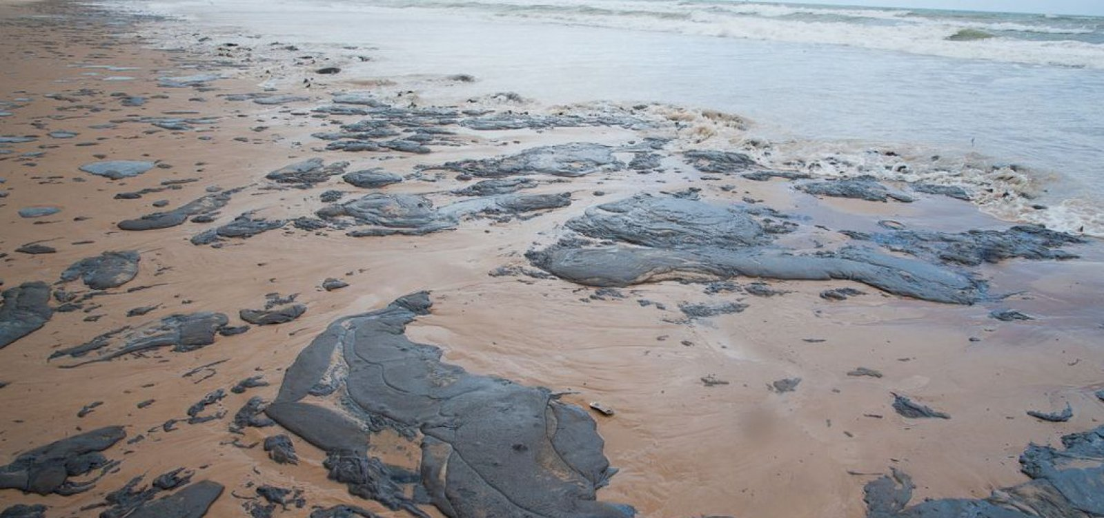 [Petrobras já retirou mais de 200 toneladas de óleo das praias do Nordeste]