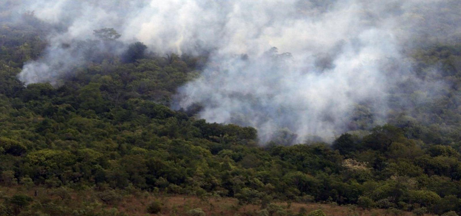 [Amazônia tem outubro com o menor número de queimadas da história]