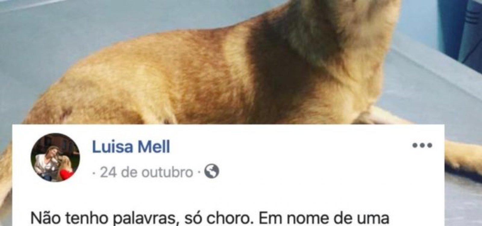[Casa de Oxumarê notifica Facebook por postagens 'difamatórias e ofensivas' de Luisa Mell]