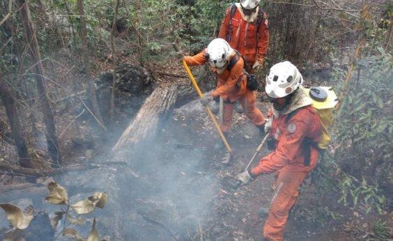[Chapada Diamantina: incêndio florestal em Rio de Contas é controlado por bombeiros]