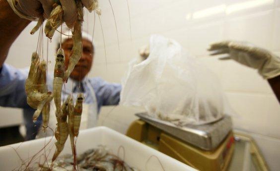 [Pesquisadores da Ufba contestam liberação de pescado para consumo]