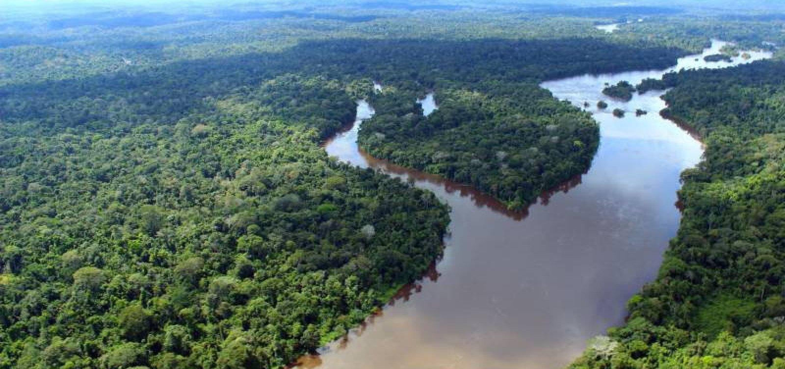 [Taxa de desmatamento pode ter aumento de 26% na Amazônia]