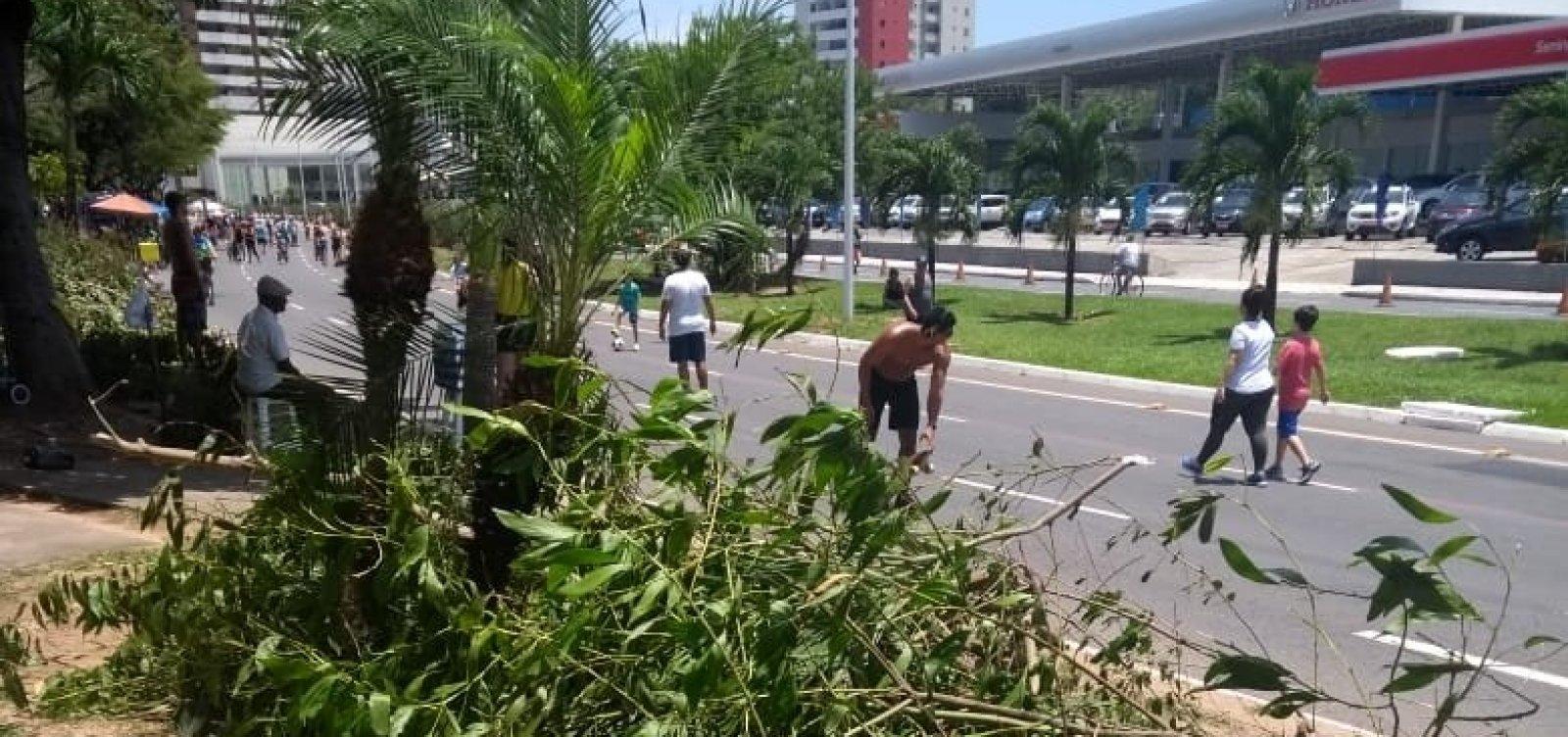 [Moradora reclama de entulho deixado pela Prefeitura após limpeza de vegetação na Magalhães Neto]